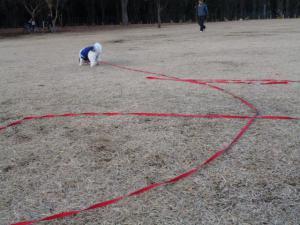 2013.1.1 小金井公園