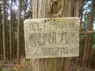 醍醐丸20141031