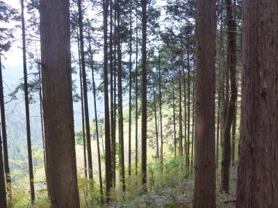 黒山三滝20141117