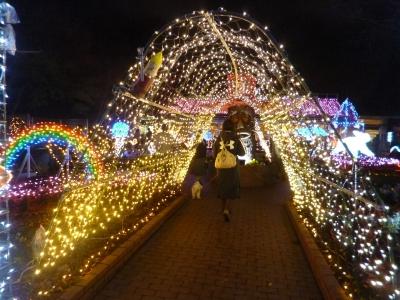 国営武蔵丘陵森林公園20141127