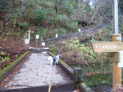 高尾山20141205