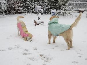 雪とツインズ2