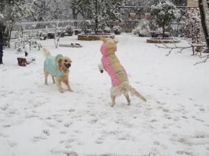 雪とツインズ3