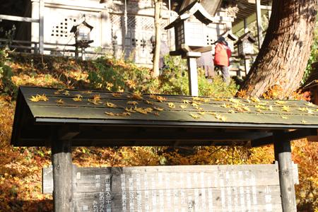 2013-11-20_3861.jpg