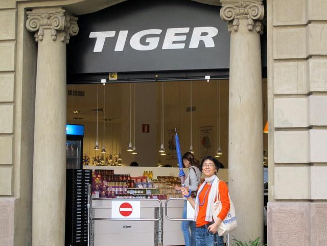 tigers (1)