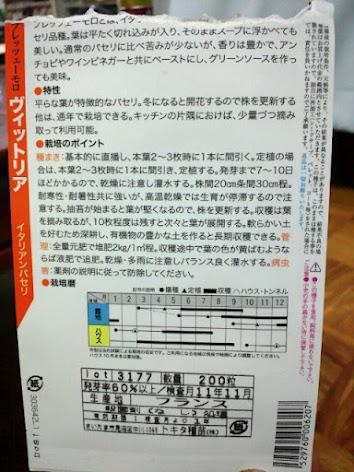 2012-08-28裏パセリ