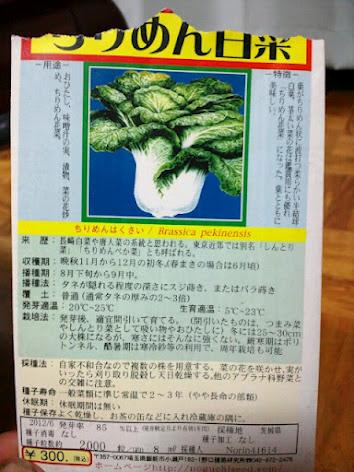 2012-08-28白菜