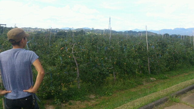 2012-09-11りんごはたけ