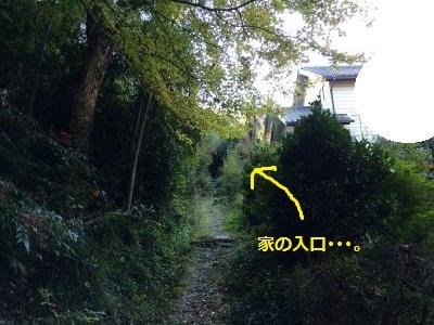 蜀咏悄85_convert_20131214191943