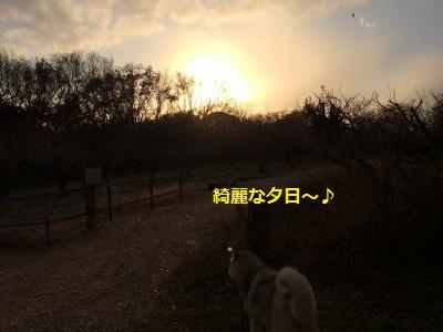 蜀咏悄262_convert_20131219202821
