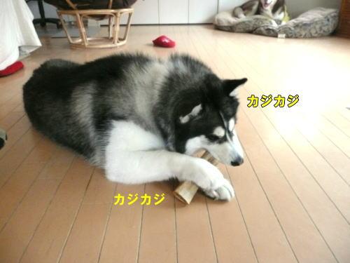 2012060314.jpg