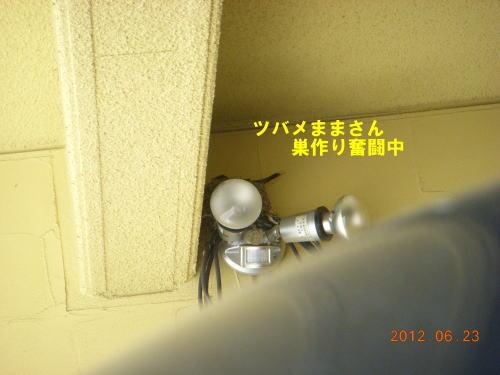 2012062301.jpg