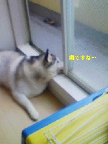 2012070103.jpg