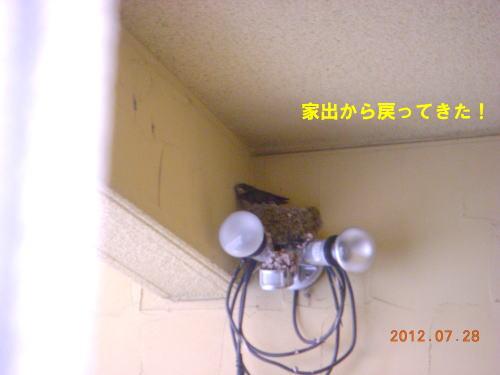 2012072801.jpg