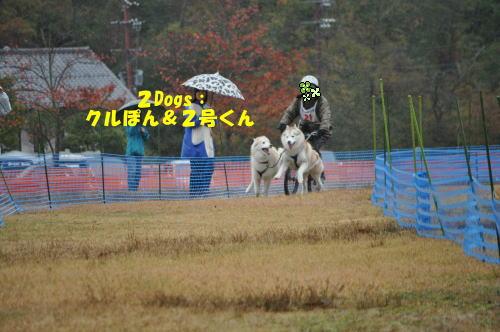 2012111115.jpg