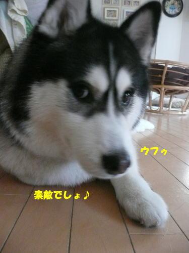 2012111809.jpg