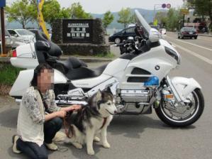 2012 5月山中湖 ワフ 057