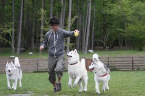 2012 5月山中湖 ワフ 330