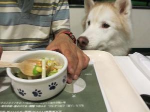 2012 7月菅平合宿 029