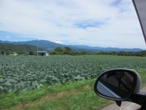 2012 7月菅平合宿 411