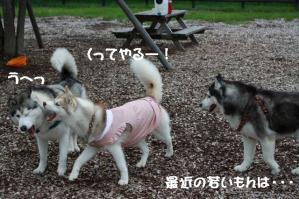 2012 7月菅平合宿 030a