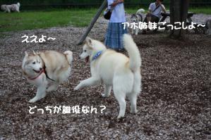 2012 7月菅平合宿 042a