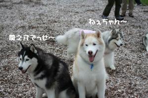 2012 7月菅平合宿 034a