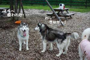 2012 7月菅平合宿 032a