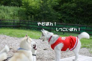 2012 7月菅平合宿 206