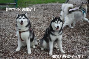 2012 7月菅平合宿 039B