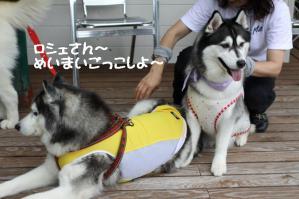 2012 7月菅平合宿 155a