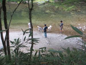 2012 8月鮎料理「渓流荘」 038