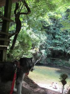 2012 8月鮎料理「渓流荘」 082