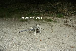 2012 8月鮎料理「渓流荘」 019a