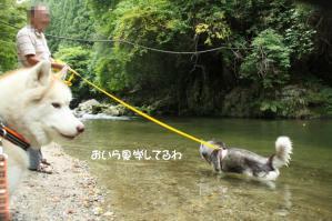 2012 8月鮎料理「渓流荘」 021a