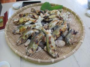 2012 8月鮎料理「渓流荘」 044