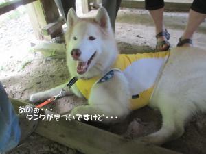 2012 8月鮎料理「渓流荘」 050a