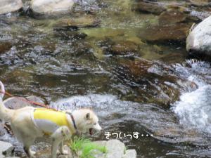 2012 8月鮎料理「渓流荘」 073a