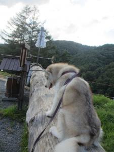 2012 9月諏訪湖・車山高原 042