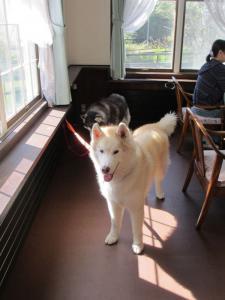 2012 9月諏訪湖・車山高原 089