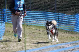 2012-04-08美山ギグ 493_800