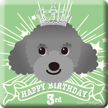 sota_birthday03_2012.jpg