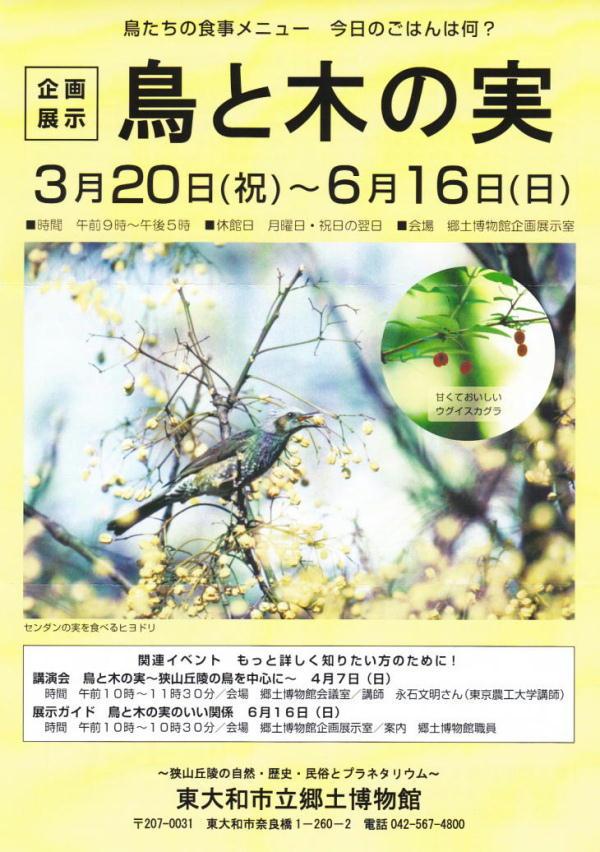 20130310-1 企画展示-鳥と木の実