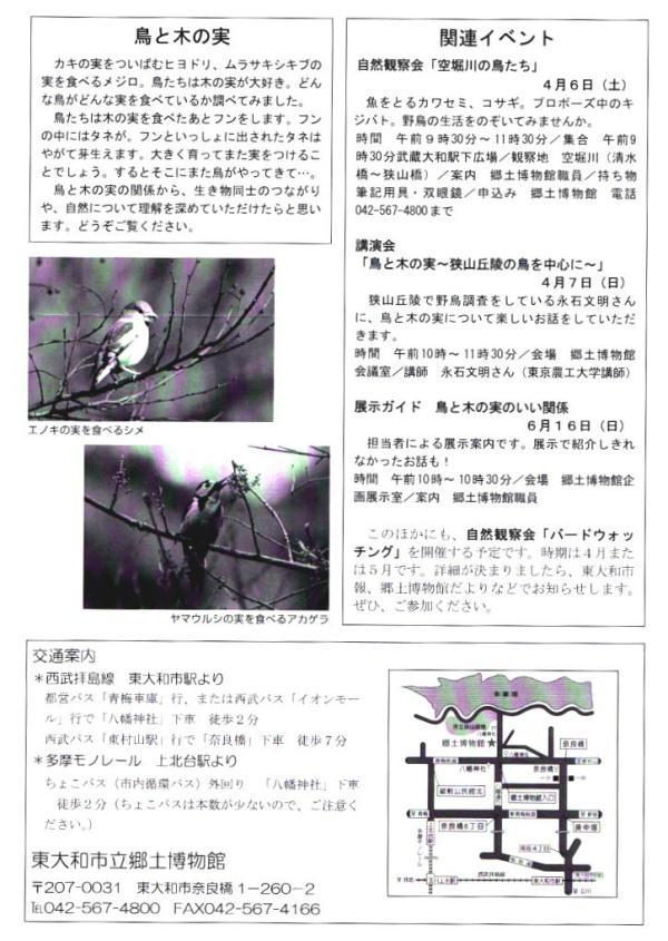 20130310-2 企画展示-鳥と木の実
