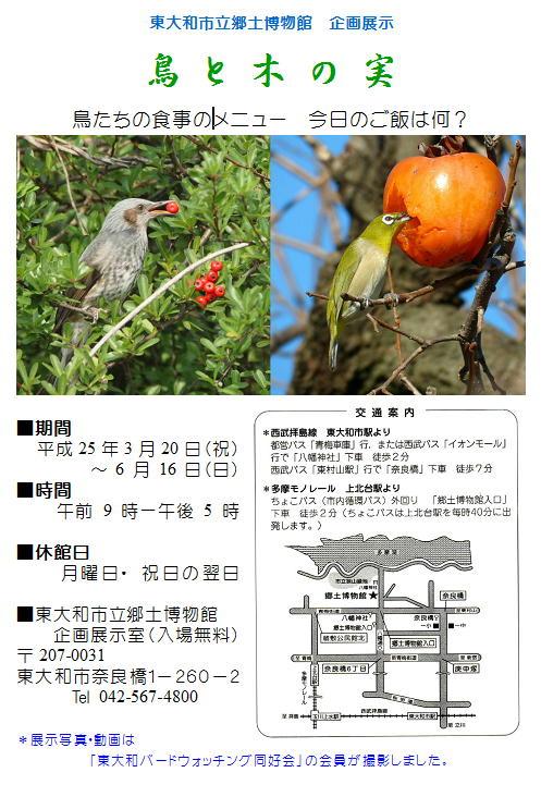 20130320b 企画展示-鳥と木の実