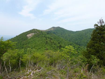 01御殿山から見る山頂-春