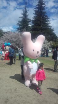 005姫路城桜