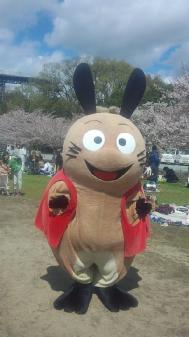 006姫路城桜