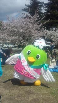 007姫路城桜