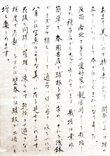 DSC01077 - コピー (2)サギソウ左